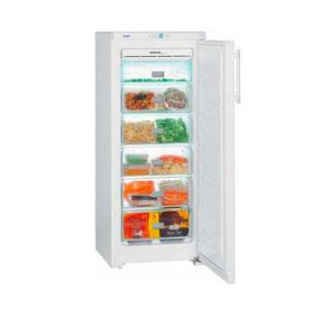 Congelatore Liebheer 2303GNP2303 | Il Faro Elettrodomestici